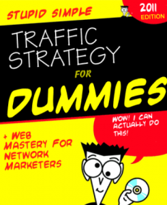 Stupid Simple Traffic Strategy