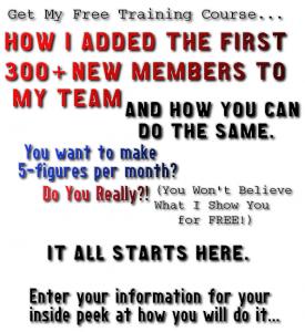 MLM Network Marketing Training Course