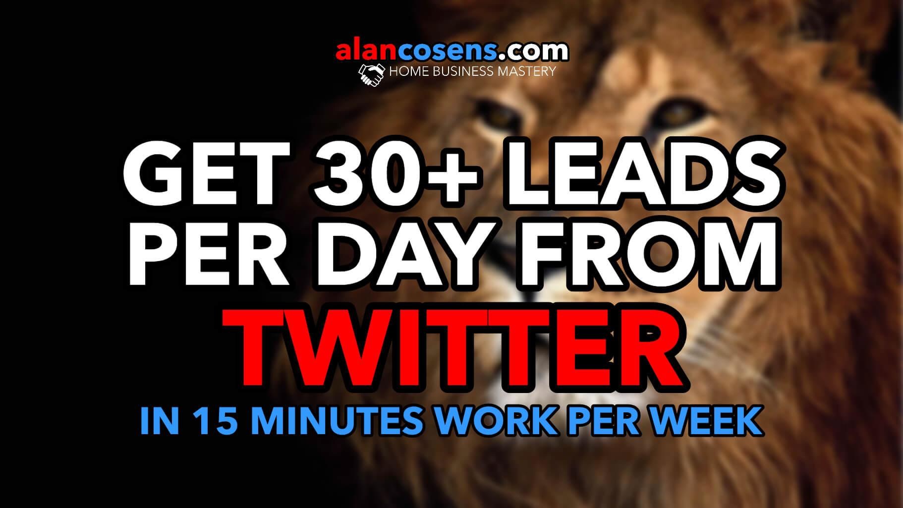 30 Leads Per Day From Twitter