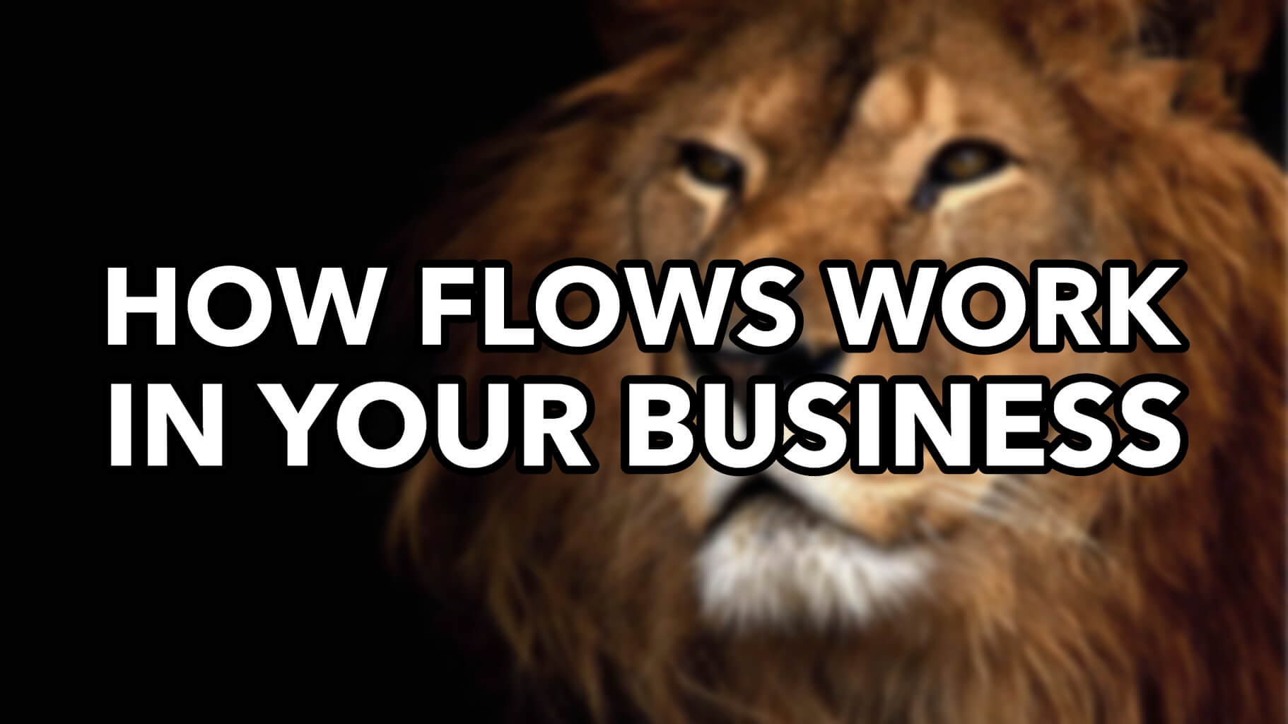 How Flows Work In Your Business